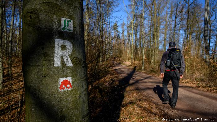 Hiking in the Thuringian Forest (picture-alliance/dpa/T. Eisenhuth)