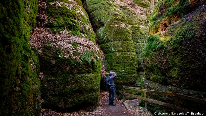 The Dragon's Gorge (Drachenschlucht) in the Thuringian Forest (picture-alliance/dpa/T. Eisenhuth)