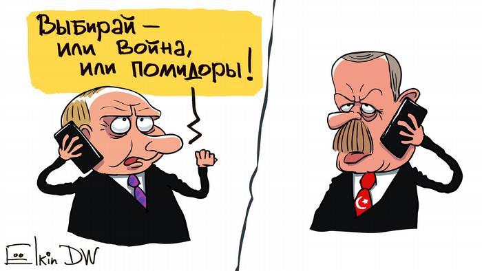 Путин ставит ультиматум Эрдогану - карикатура Сергея Елкина