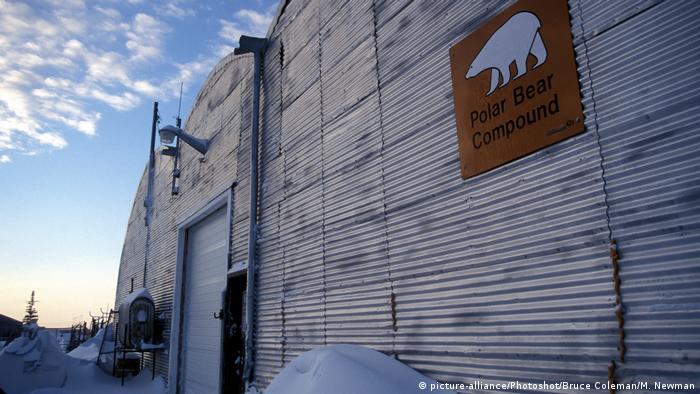 A polar bear holding facility in Churchill, Manitoba