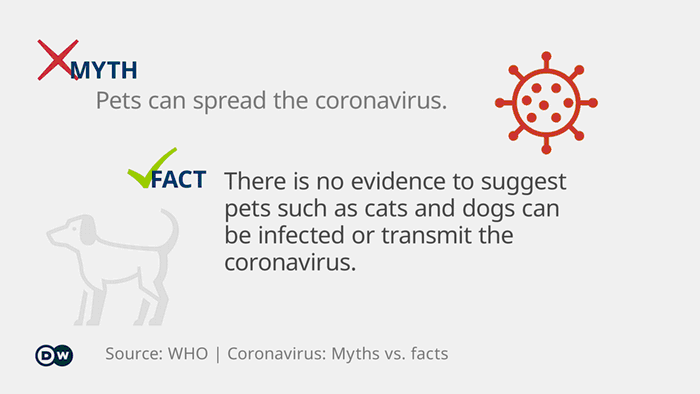 Infographic myth vs. fact coronavirus