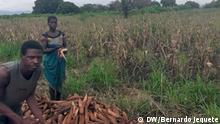 Mosambik Bewohnern von Dombe droht Hunger