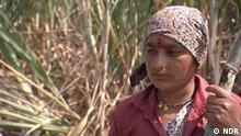Indien Gebärmutter