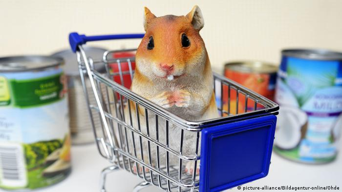 A hamster in a shopping cart