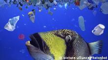 Plastikmüll im Ocean