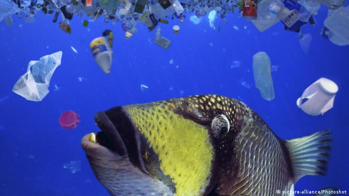 Πλαστικά σκουπίδια στον ωκεανό