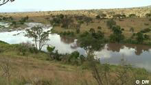 DW Sendung Eco Africa Mara River in Tansania
