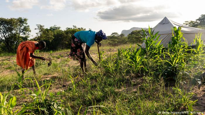 Farmers in Zimbabwe (Getty Images/AFP/J. Njikizana)