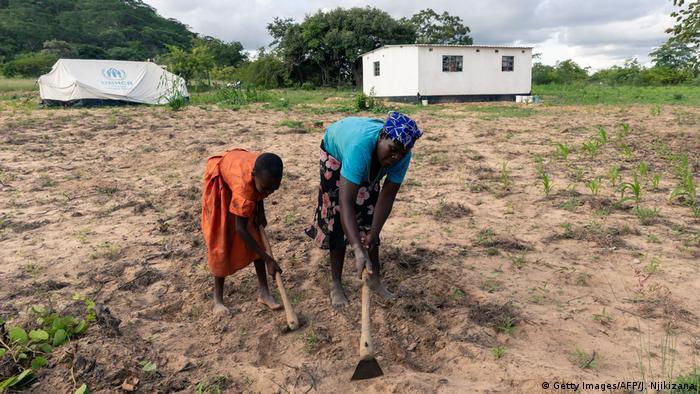 Simbabwe Buhera | 1 Jahr nach Zyklon Idai | Gladys Chiremba, Feldarbeit