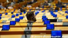 Coronavirus - Sitzung des EU-Parlaments in Brüssel