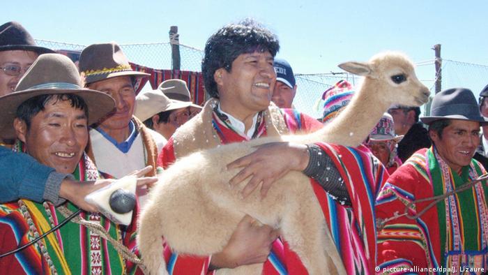 Bolivien Vikunja-Tiere (picture-alliance/dpa/J. Lizaure)