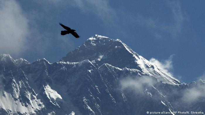 un uccello vola mentre l'Everest è visto da Namche Bajar, distretto di Solukhumbu, Nepal (alleanza con le foto / AP Photo / N. Shrestha)