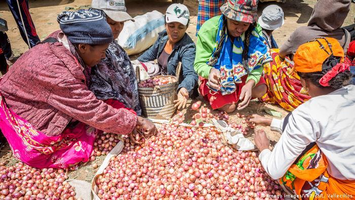 Madagaskar Zwiebelverkauf auf dem Markt (Imago Images/VWPics/L. Vallecillos)