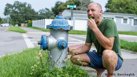 Rob Greenfield munches on some leaves near a fire hydrant
