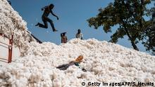 Boys jump from a transport truck onto a heap of cotton in Bakou in the Wewe District, Benin, on January 9, 2018. Cotton is one of the biggest contributors to the national economy of Benin and the country is hoping for a bumper harvest this year. / AFP PHOTO / Stefan HEUNIS (Photo credit should read STEFAN HEUNIS/AFP via Getty Images)