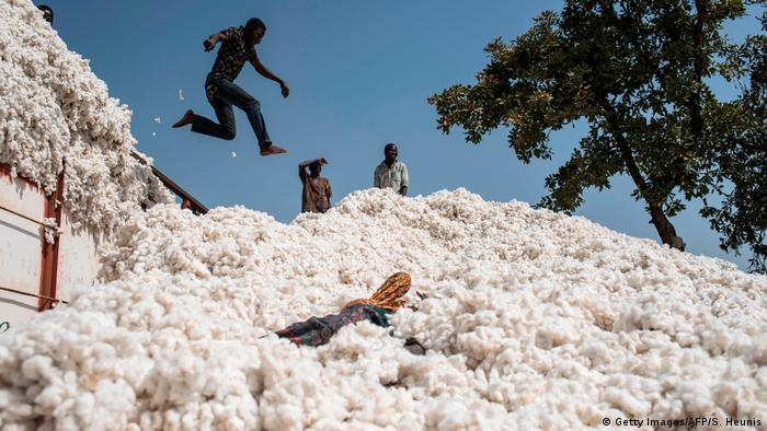 BG Wasserverbrauch Anbauprodukte Afrika | Baumwolle in Benin (Getty Images/AFP/S. Heunis)