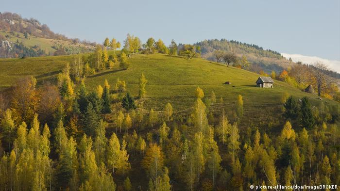 Perbukitan di Rumania tertutup oleh hutan