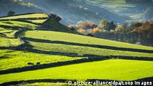 England | Felder | Peak District