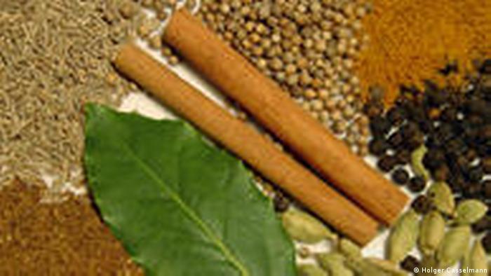 Typische Gewürze für Garam masala