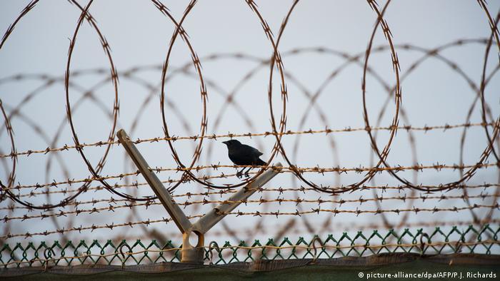Колючая проволока на тюремной стене
