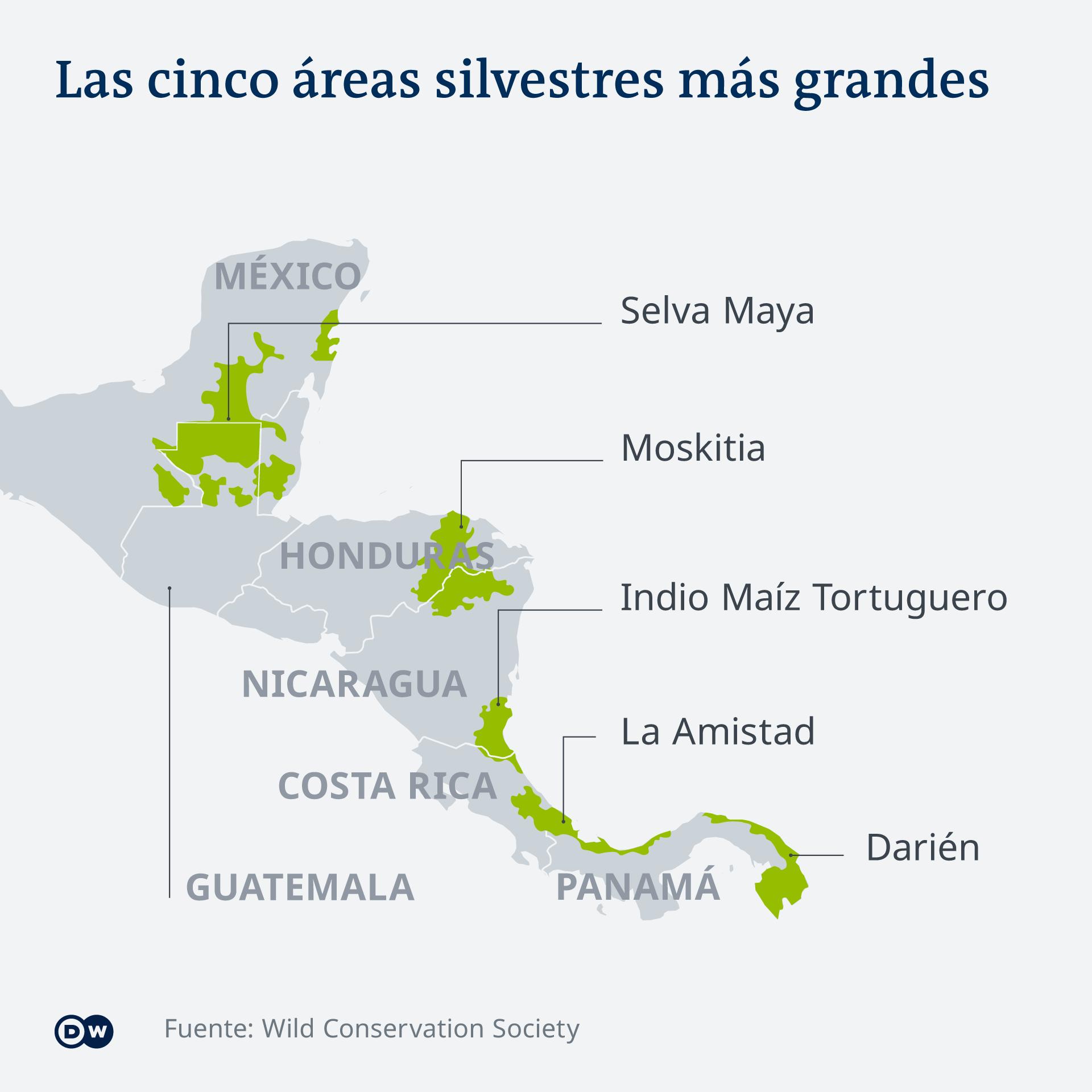 Los cinco bosques más grandes de Mesoamérica tienen más de 127.000 kilómetros cuadrados, una extensión tres veces mayor que la de Suiza y cinco veces que la de El Salvador.