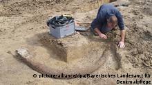 Riekofen - zweieinhalb Meter langer Stoßzahn eines Mammuts gefunden