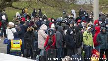 Ukraine Ungarn Gastarbeiter Coronavirus Grenze