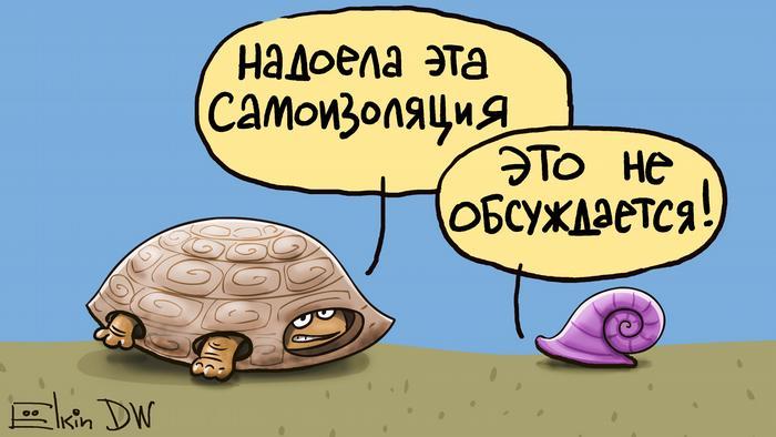 В РФ завели уголовное дело на сатирика по подозрению в фейке о ...