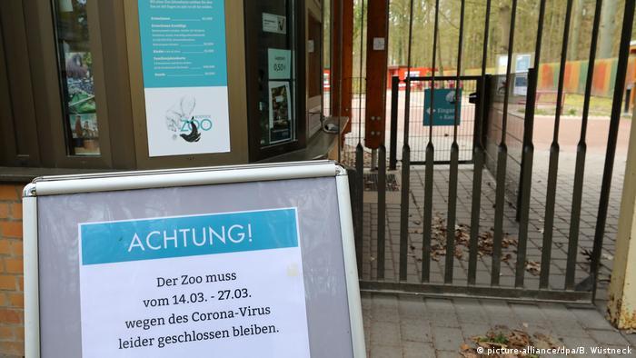 Rostocker Zoo - langsam wird es eng (picture-alliance/dpa/B. Wüstneck)