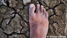Indien Landwirtschaft | Dürre in Andhra Pradesh