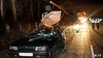 Cars hit by falling trees in Spain