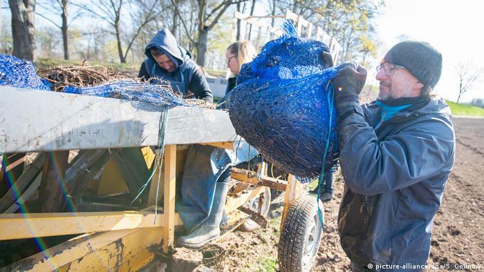 Landwirte machen sich sorgen, dass nicht genügend Erntehelfer aus Osteuropa nach Deutschland kommen