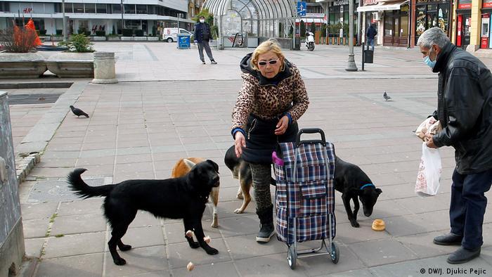 I ulični psi imaju svog heroja