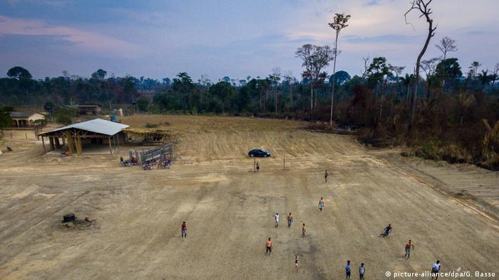 Amazon ormanları da ciddi tahribat ile karşı karşıya.