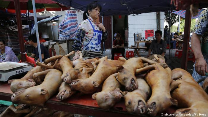 China Hundesfleisch (picture-alliance/dpa/Wu Hong)