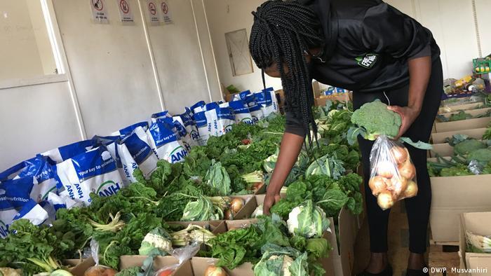 Simbabwe Harare Gemüsemarkt während Coronakrise (DW/P. Musvanhiri)