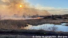 Ukraine Waldbrände bei Tschernobyl