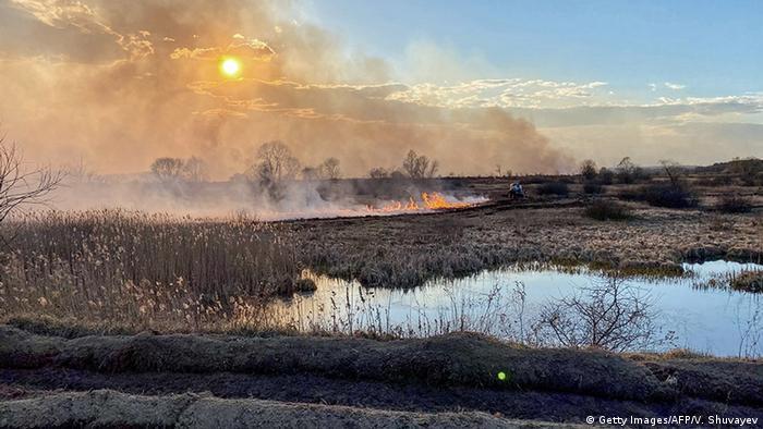 Ukraine Waldbrände bei Tschernobyl (Getty Images/AFP/V. Shuvayev)