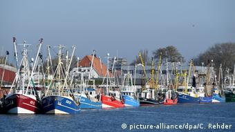 Port in Büsum on Germany's North Sea coast with several colorful fishing boats
