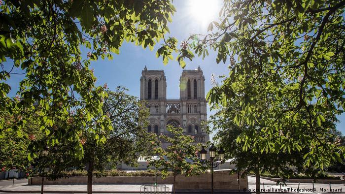 Die Kathedrale von Notre-Dame steht, von Ästen eingerahmt, in der Sonne.