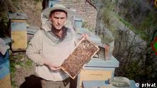 Bienenvölker in Serbien wegen Corona-Ausgangssperre bedroht