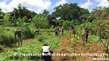 Bauern in Lateinamerika