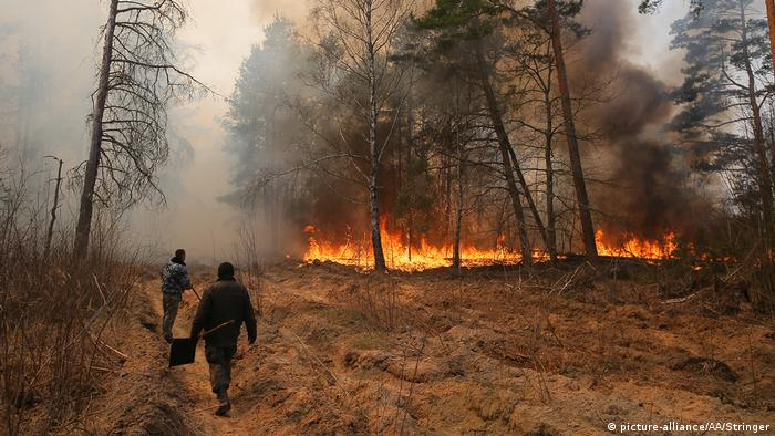 Вонгеборці в Україні гасять пожежу