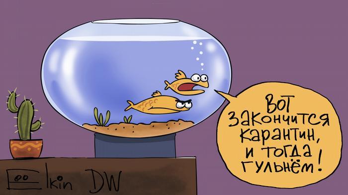 Самоизоляция в России на примере Владимира Путина | Россия и ...