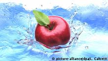 Roter Apfel | Symbolbild | Vogelperspektive