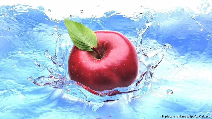 Roter Apfel | Symbolbild | Vogelperspektive (picture-alliance/dpa/L. Calvetti)