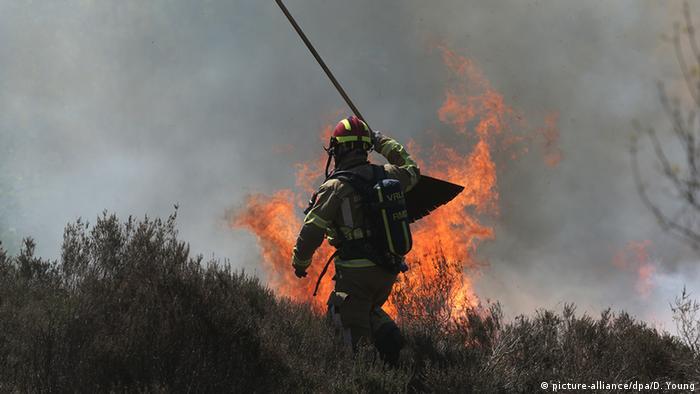 A firefighter battles the blaze near the German-Dutch border