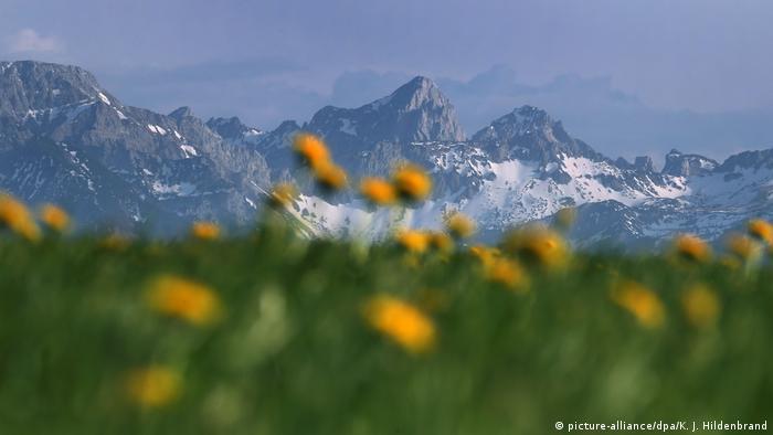 Восточный Альгой, Бавария