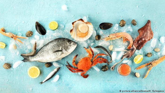 Fisch und Meeresfrüchte (picture-alliance/Zoonar/K. Solovyeva)