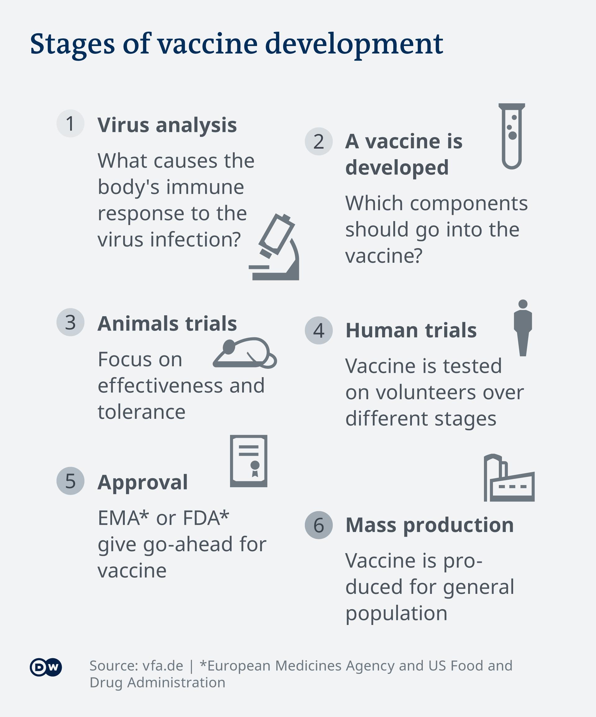 Infografik Die Etappen der Impfstoffentwicklung EN